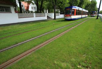 Der Ausbau des Rasengleises über eine Strecke von 2.500 m ist vorläufig abgeschlossen.